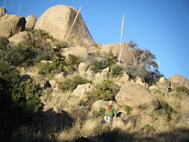 Aviva with Mysterious boulders on Oracle dream property.    Join and Like the Friend / Fund Campaign on Face book.