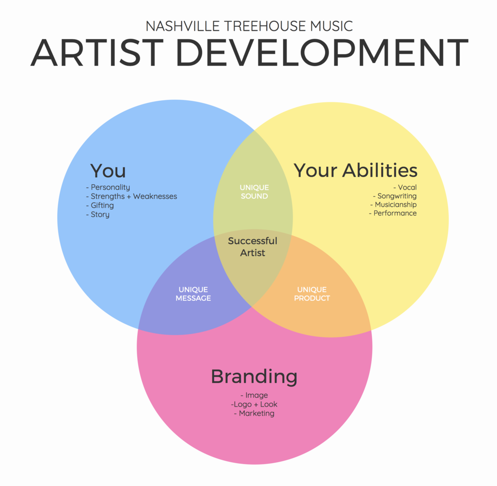 Artist Development Summary
