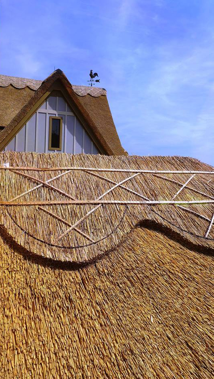thatch-close-up.jpg