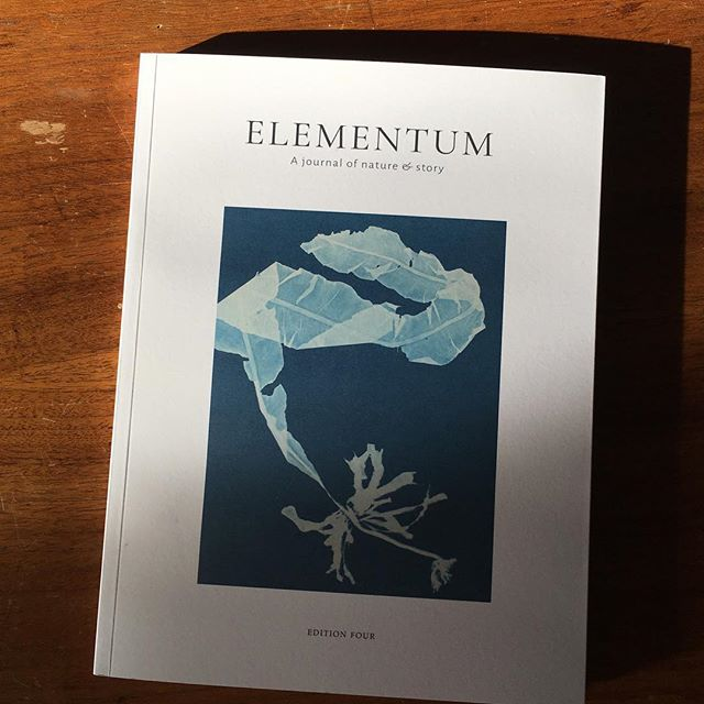 I got very exciting mail from England today. So thrilled about this dreamy gift from @elementumjournal. . I'm especially excited about two things: the feature on Anna Atkins and her ground breaking cyanotypes of seaweed in the 1800s, and the jaw-dropping work of Jane Atkinson, who illustrates salt marsh terrain in LACE. . We get an intimate essay about place and craft and change and it feels like a poem. Deeply inspiring. Can't wait to see what else is inside. . As soon as I'm done, it's going directly to @magnificentsparrow  for an early Christmas 🎁. Stacy, we may need to move to England to meet the rest of our family?