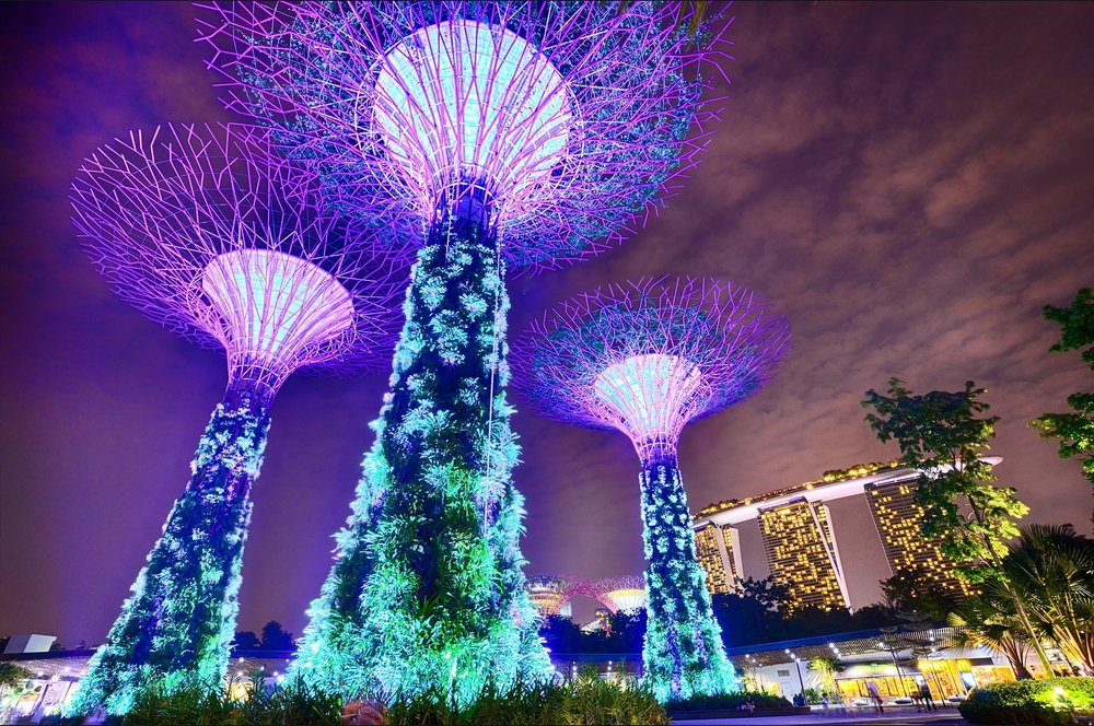 Singapore Field Trip May 2018 - Sign up before March 8th using link:   https://docs.google.com/forms/d/e/1FAIpQLSeYPFr1hhyVeqS1r3ioF8GxJxmGF4IE0BDRMSg2BnEcL3B-Kw/viewform  Every year we organize an international field trip immediately following the winter academic term. This international field trip provides a unique opportunity for 20 engineering students to visit some of the most advanced companies around the world. These visits help students to learn more about technology, creative design, professional engineering. While also fostering innovation and excellence in their future career. In addition, this trip enables students with an opportunity to build a network of international contacts in different industries and start to accumulate valuable resources. Stay tuned for updates on where next year's trip will be!   Learn More    -    Testimonials    -    History    -    Photos