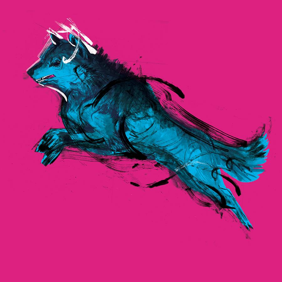 claurel_icebreaker_wolfweb.jpg