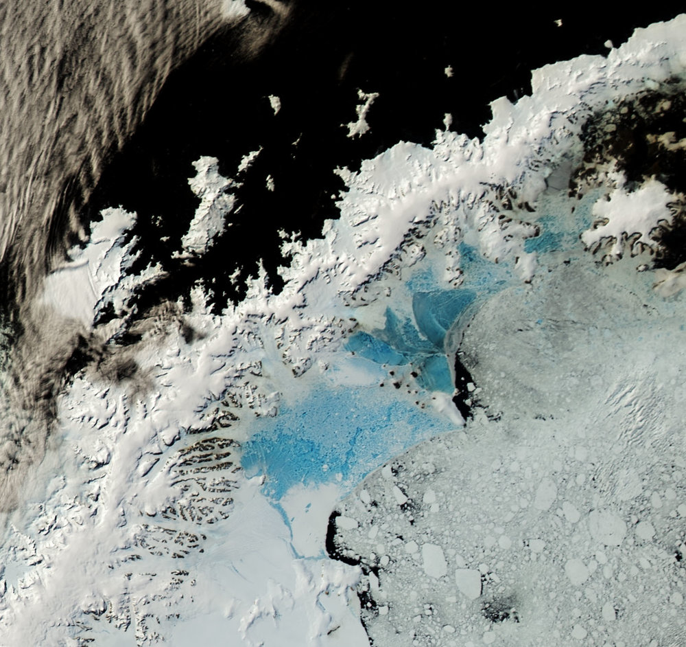 NASA Landsat image from January 8, 2016 of the Antarctic Peninsula showing surface melt on land-fast sea ice in the Larsen A and B embayments. The SCAR Inlet Iceshelf is the southern part of the Larsen B (white expanse below the lowest blue expanse).