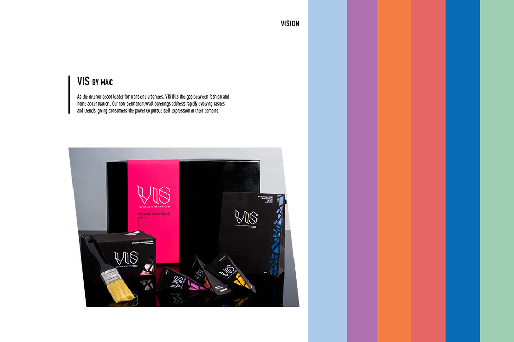 VIS_BrandBook_V57.jpg