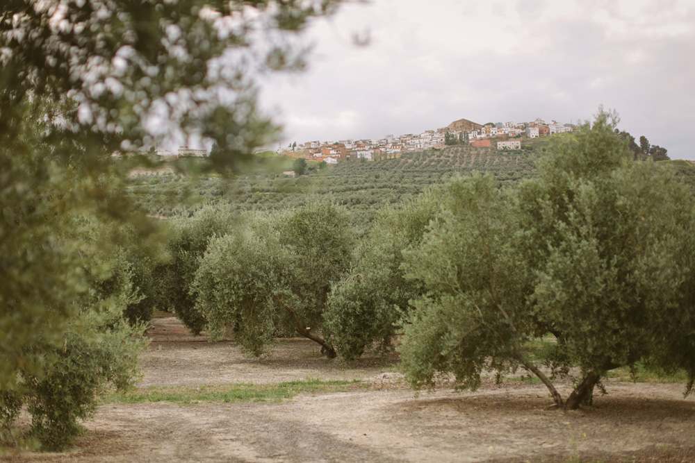 melissa_sung_photography_destination_wedding_spain_andalusia_olive_groves003.jpg
