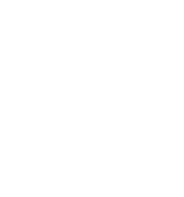 The Wasabi Store