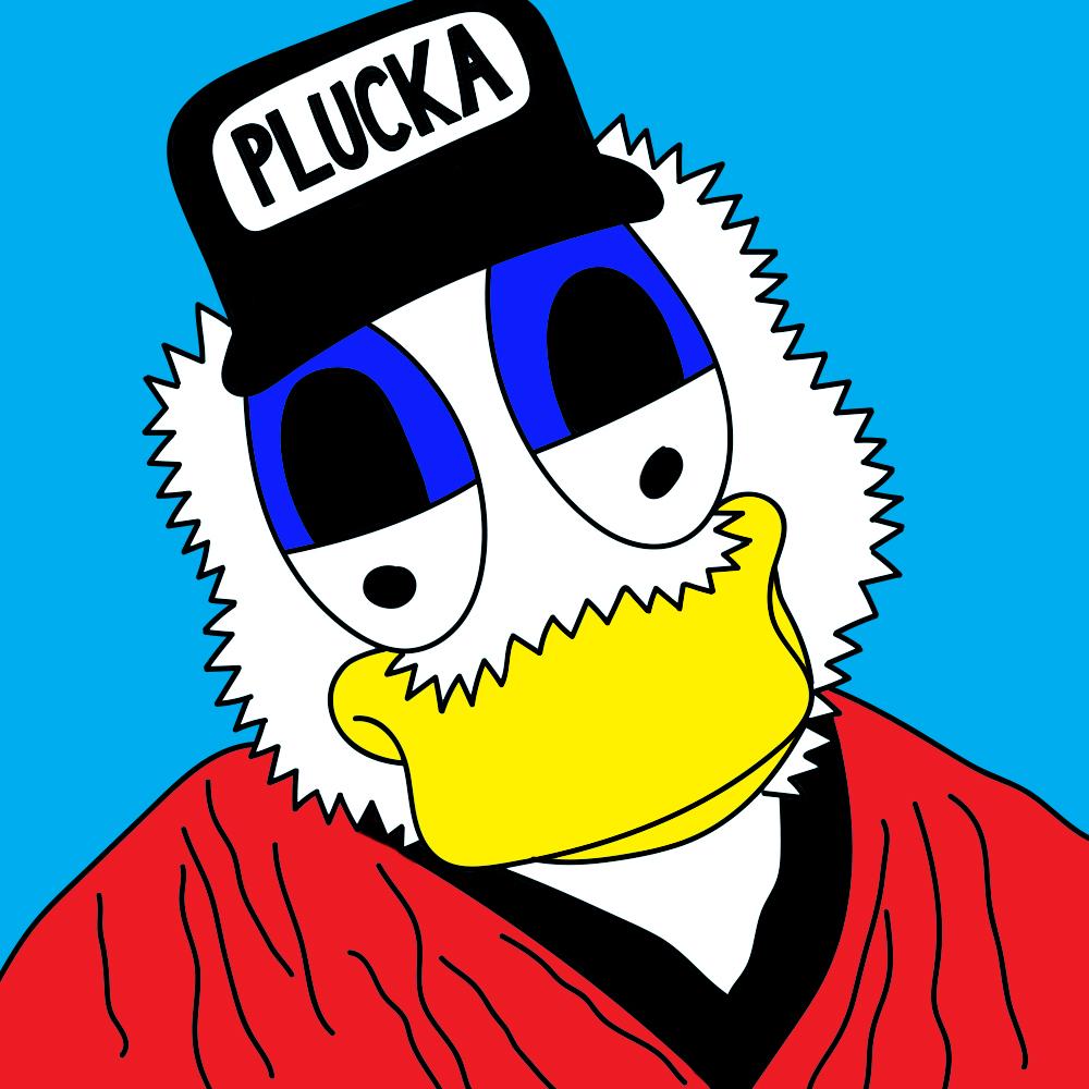 pluckaduck_refined.jpg