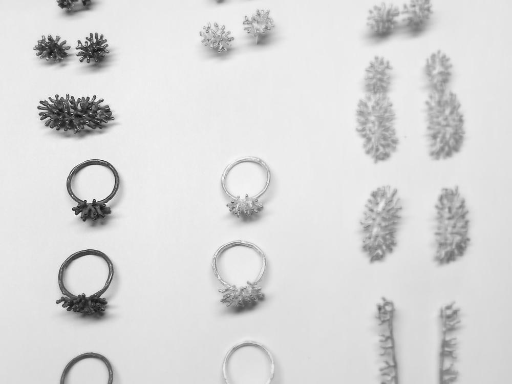 overzicht-koralen.jpg