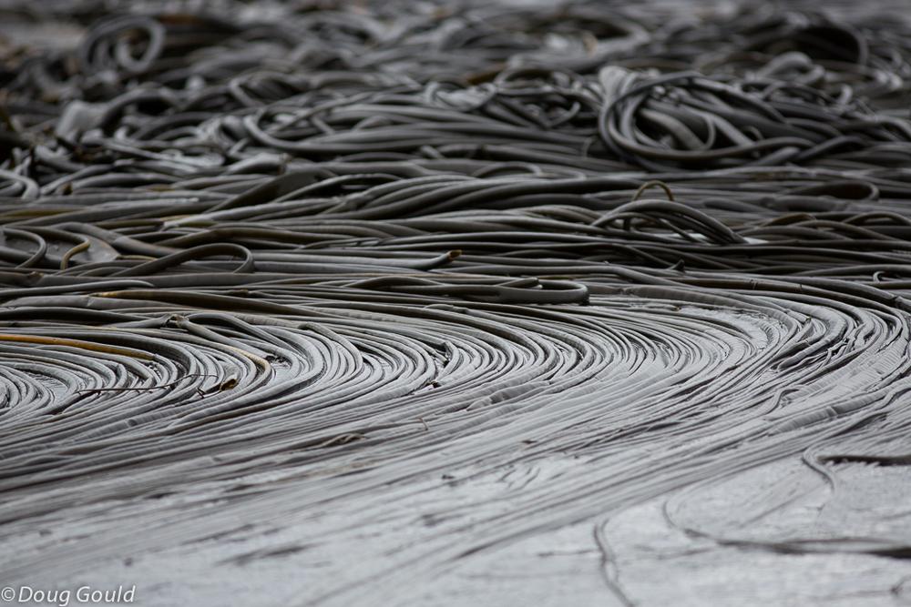 abstrac (9 of 10).jpg