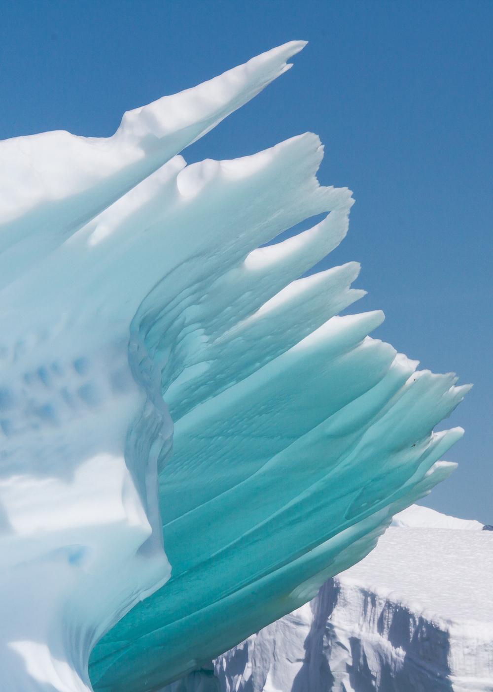 ice (5 of 20).jpg