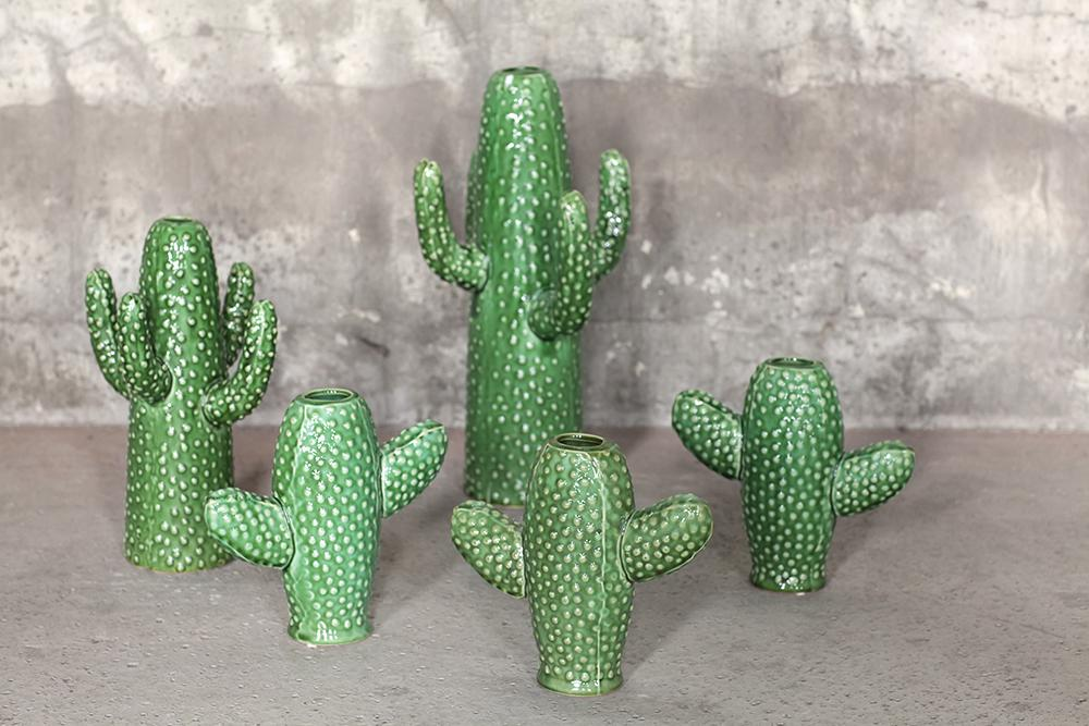 Serax Cacti
