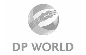 logo_cust_DPWorld_2.png