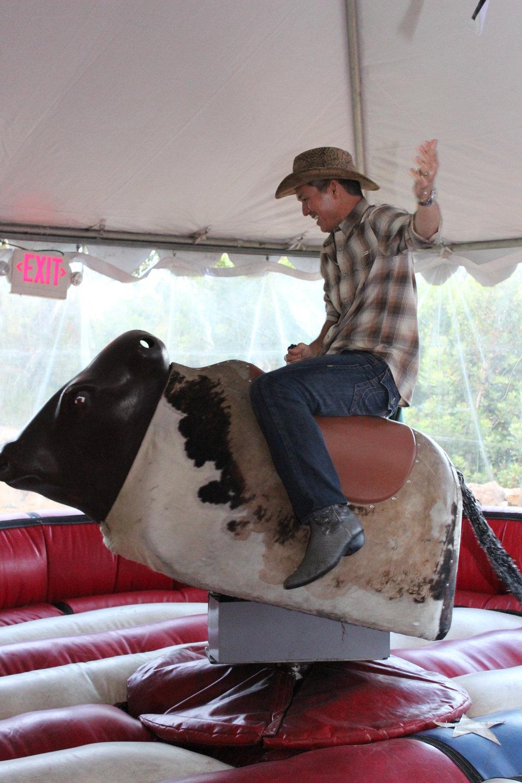bull 6.jpg