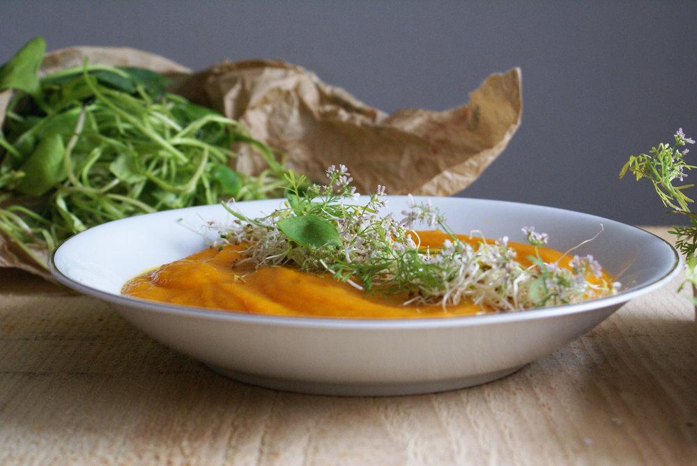 soupe en assiette fond plantes.jpg