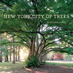 New York City of Trees by Benjamin Swett