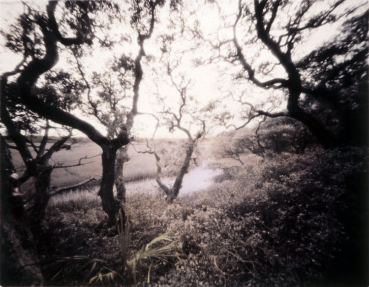BALD HEAD CREEK,   from the  Landscape  series; silver gelatin print, hand-tinted.  Limited Edition 3/10