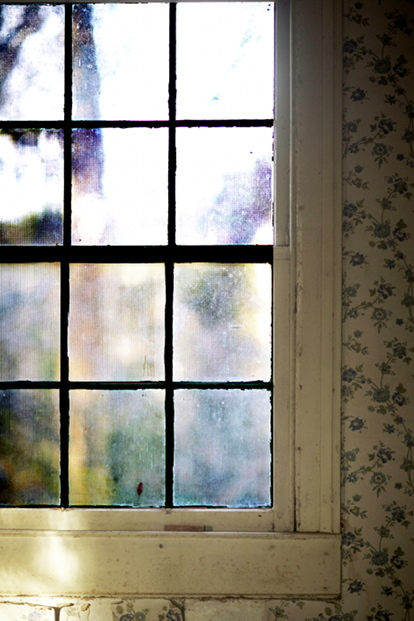 VIEW FROM WINDOW,   from  Interiors . Pigment print