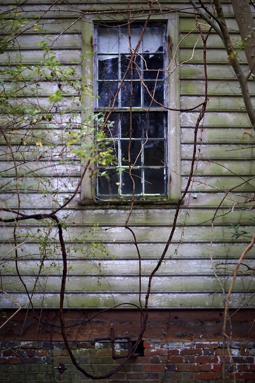 HIDDEN WINDOW  , from  Interiors .  Pigment print.