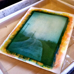 ©Elizabeth's print above, in water development