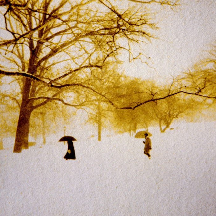 Central Park  (gum bichromate over platinum/palladium) ©Diana H. Bloomfield