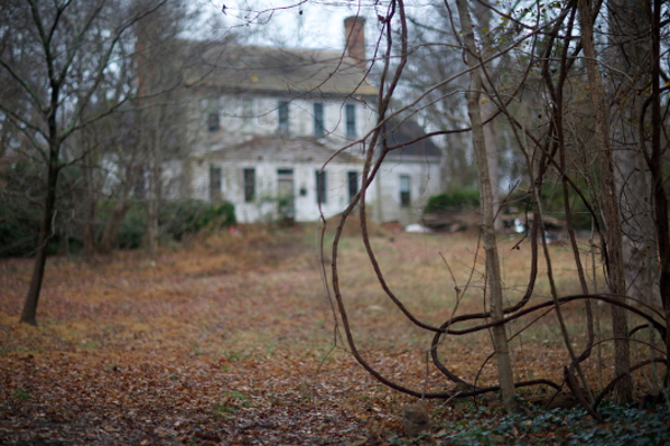 Entwined  , from  Interiors: Crabtree Jones House .  Pigment print.