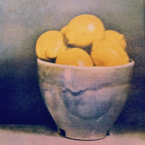 Lemons Tri-color gum©Rochelle Moser 2015