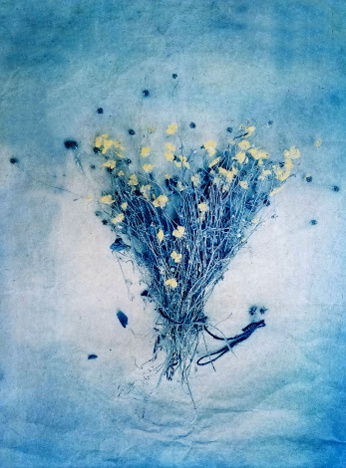 Meadow Buttercups , from  The Old Garden  series.  Tri-color gum bichromate over cyanotype.  Limited Edition