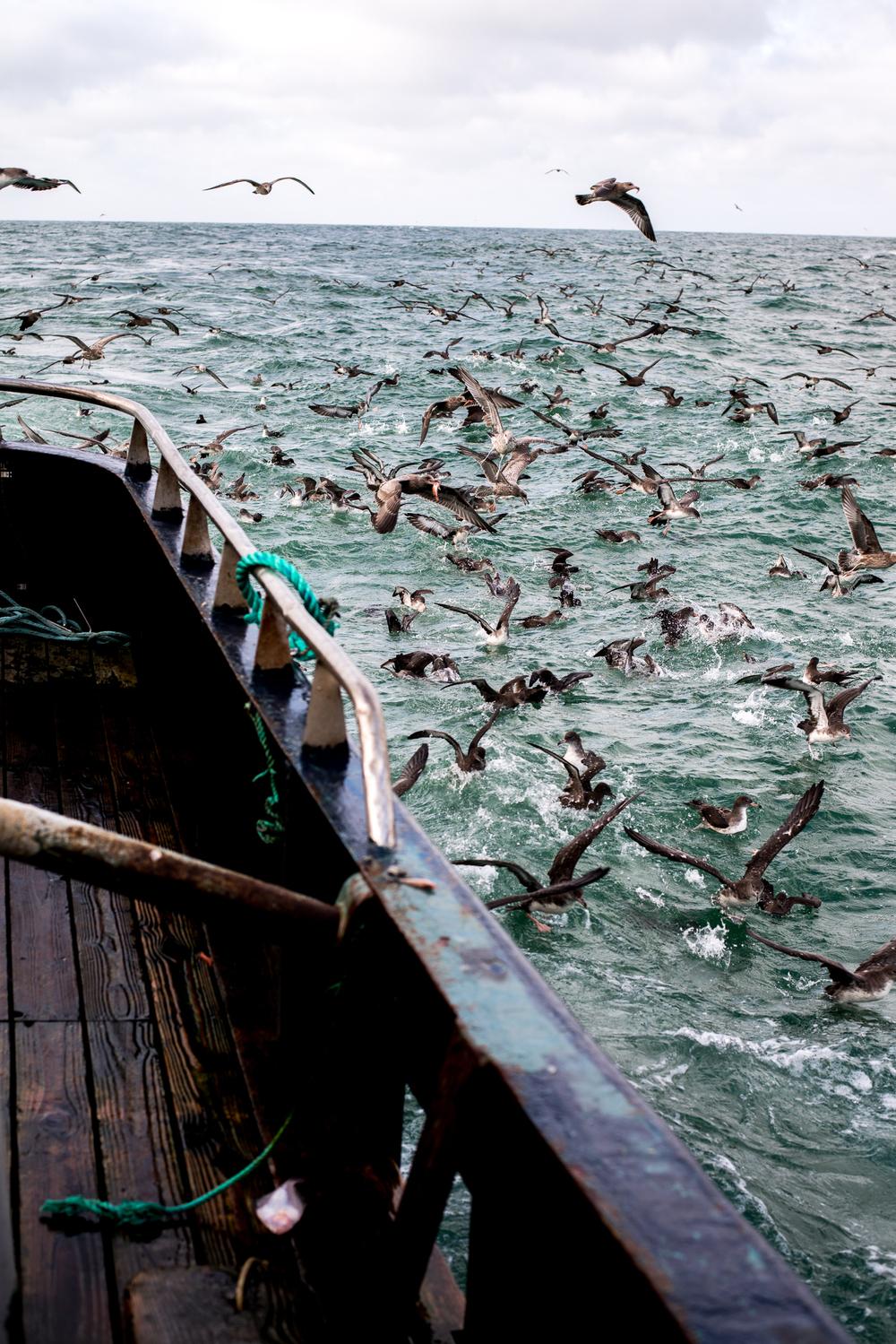 PNWfishing-21.jpg