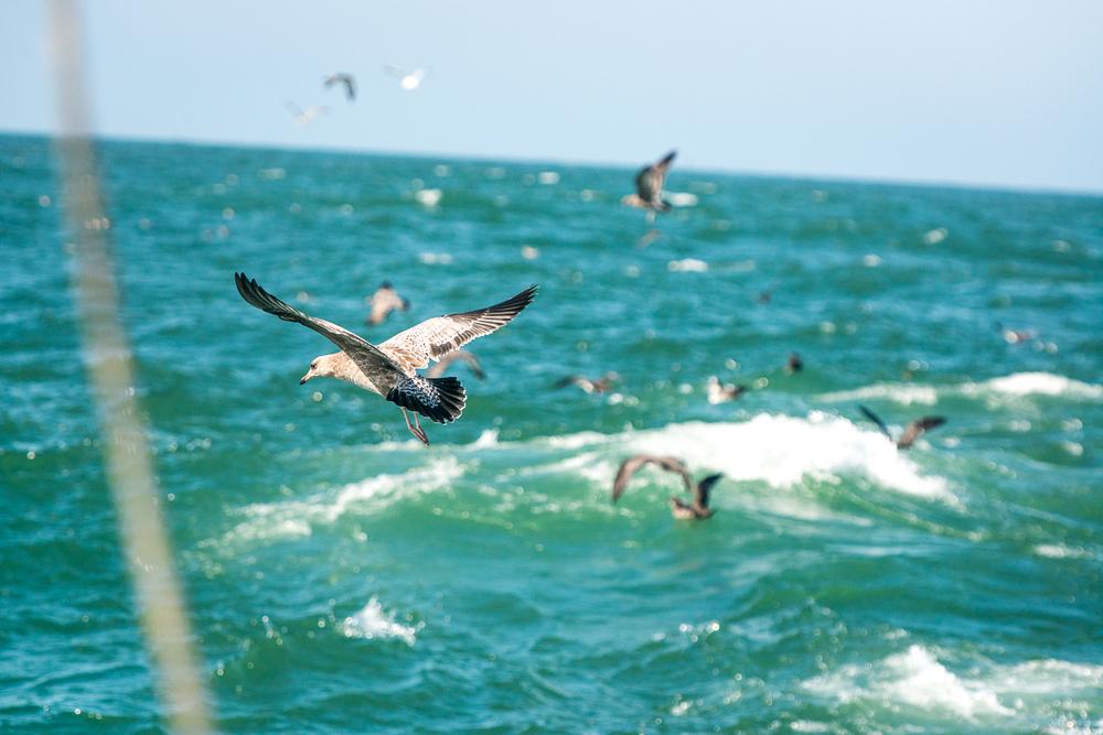 PNWfishing-25.jpg