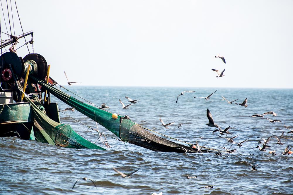 PNWfishing-33.jpg