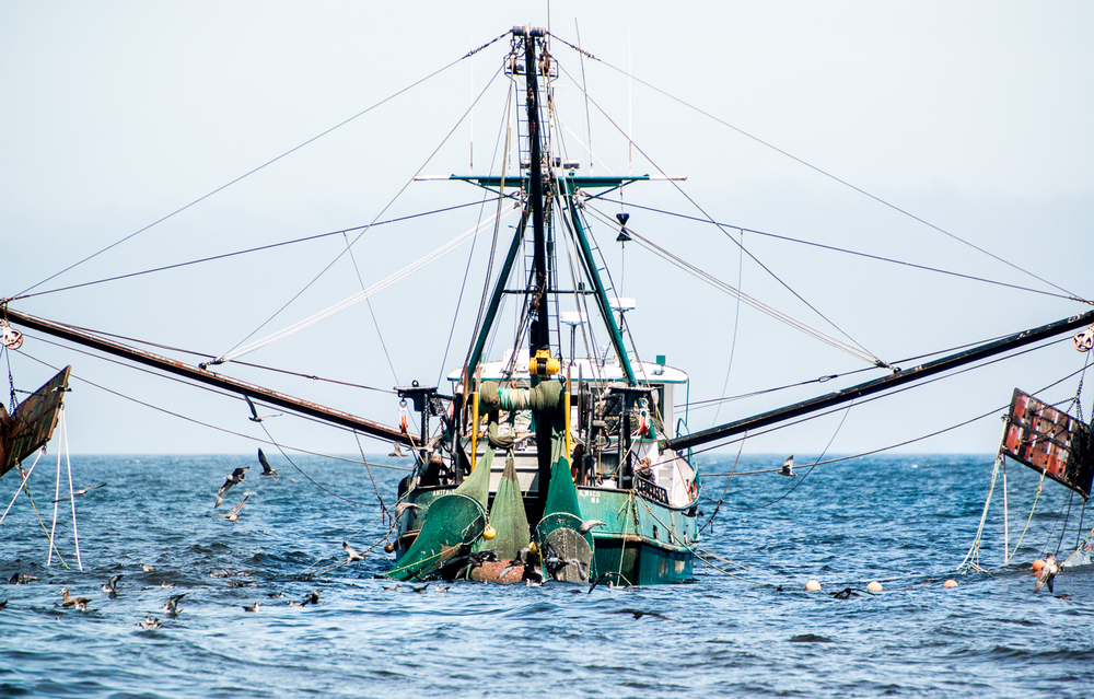 PNWfishing-35.jpg