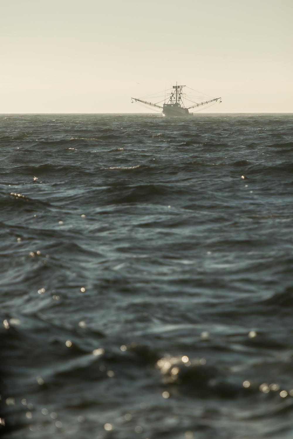 PNWfishing-37.jpg