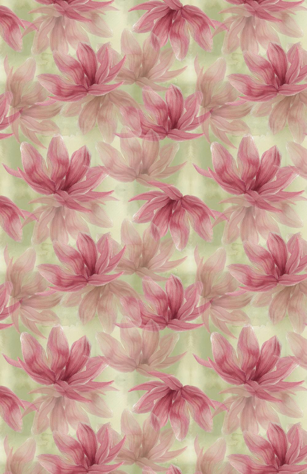 falling magnolia