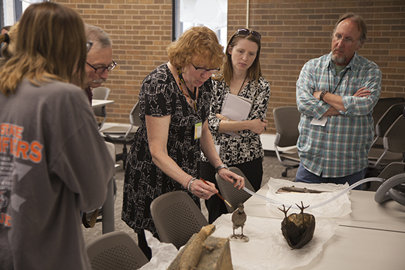 Care and Management of Natural History Collections Workshop