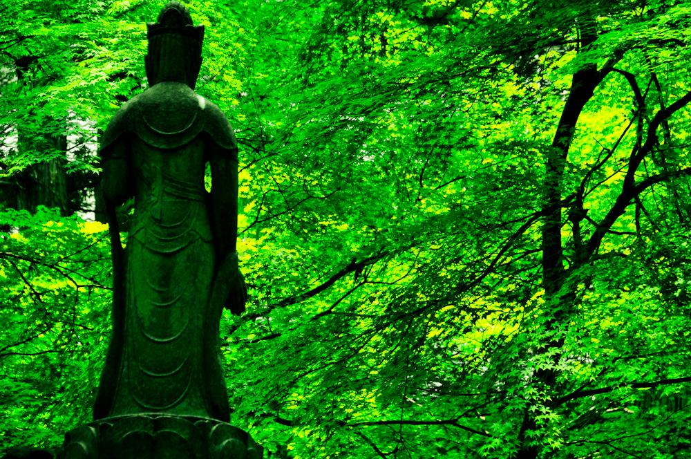 Eiheiji Zen Flickr.jpg