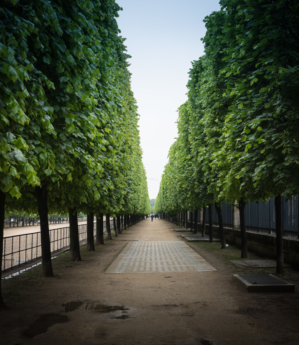 Jardin Tuileries