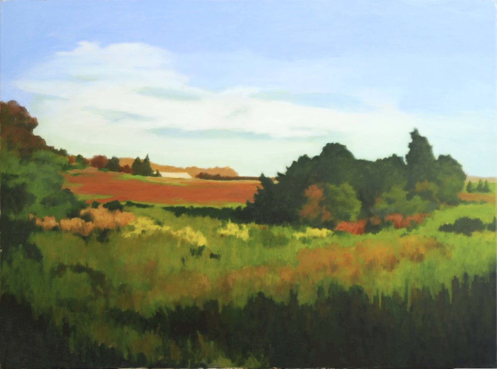 Miriam Dougenis , The Red Field , 2010, Oil on canvas, 30 x 40 inches