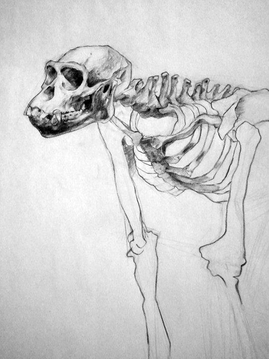 Life Drawing, 2010