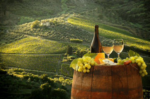 stock-photo-white-wine-with-barrel-on-vineyard-in-chianti-tuscany-italy-159594542.jpg