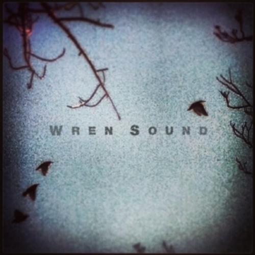 wren run your mouth