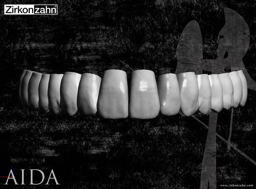 Aida Anatomy