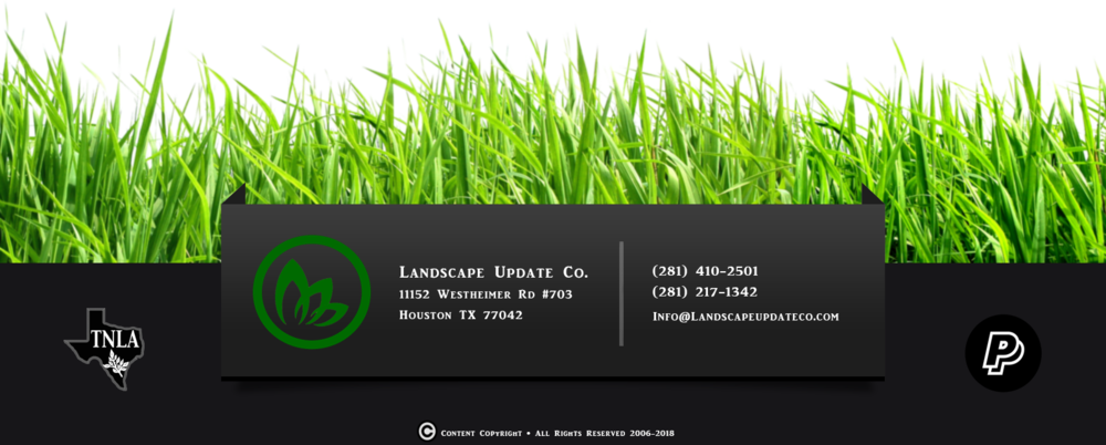 grassfooter_PNG10859.png