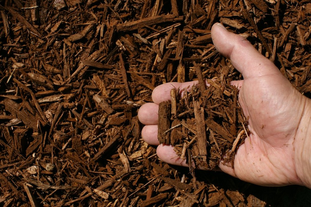 light-brown-shredded-hardwood-mulch-hand.jpg