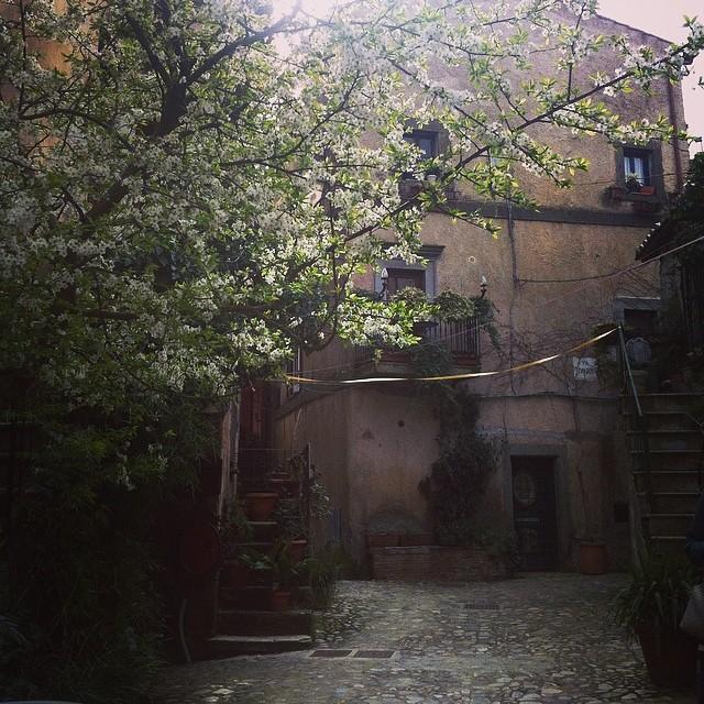 @gulhurgel, Calcata / Italy