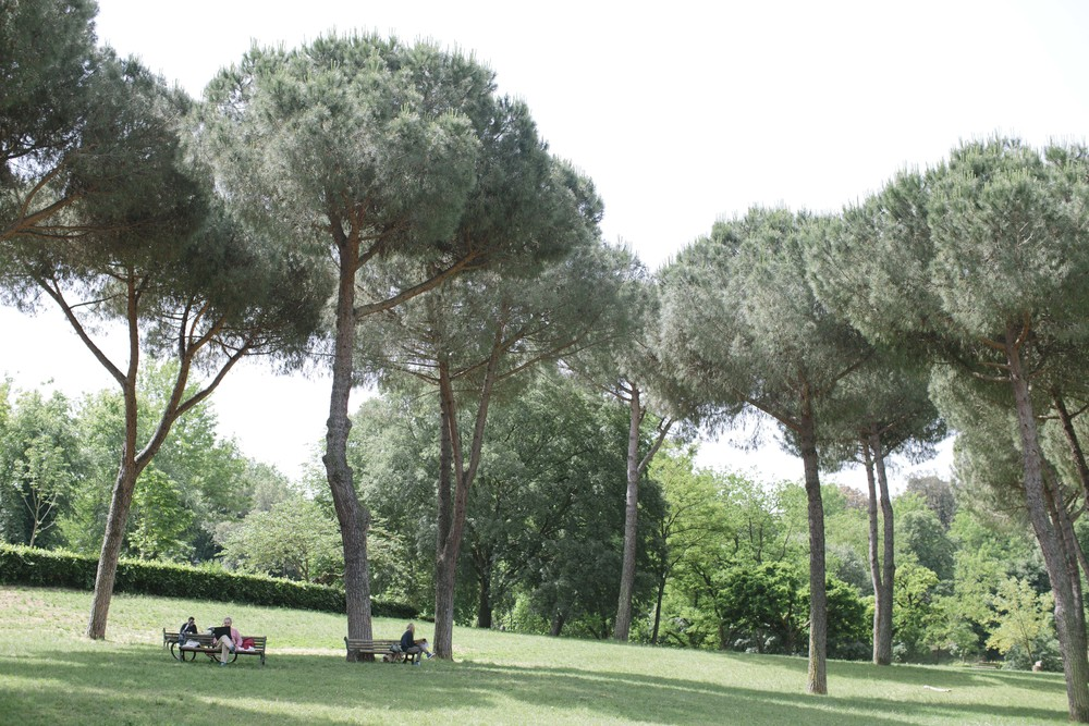 We loved these pine trees and the way the Romans enjoyed lazy afternoons (with their dogs!) in the Borghese Gardens. They reminded me of Truffula Trees from Dr. Seuss' The Lorax!