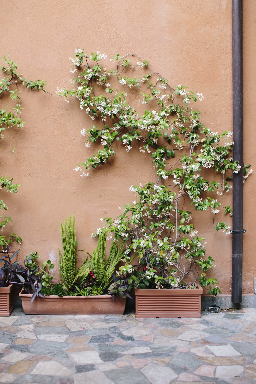 Italy Rome1_22.jpg