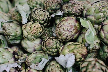 Georgia South Carolina Food Photographer-4.jpg