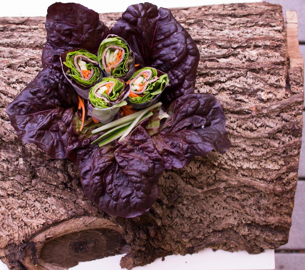 Vietnamese Beef Rolls Log