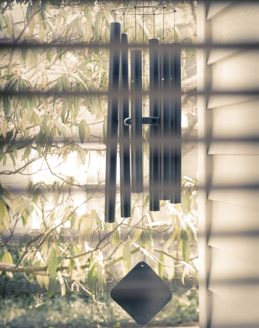 Durham_801_Windchimes_ThrutheBlinds_2102016.jpg