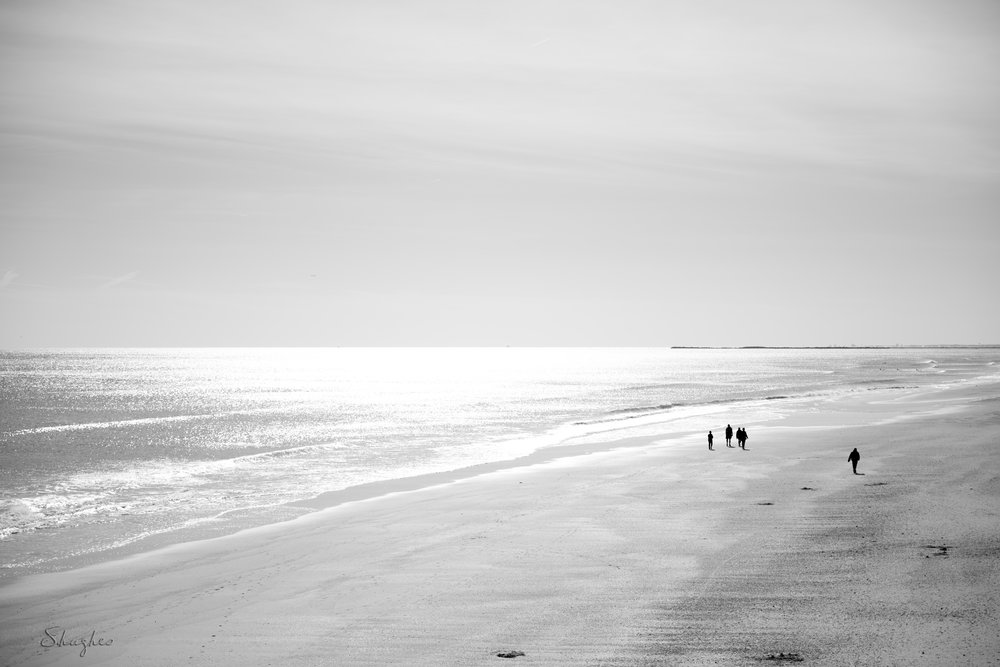 ILM_Winter_BeachFromMercersPier_12152016.jpg